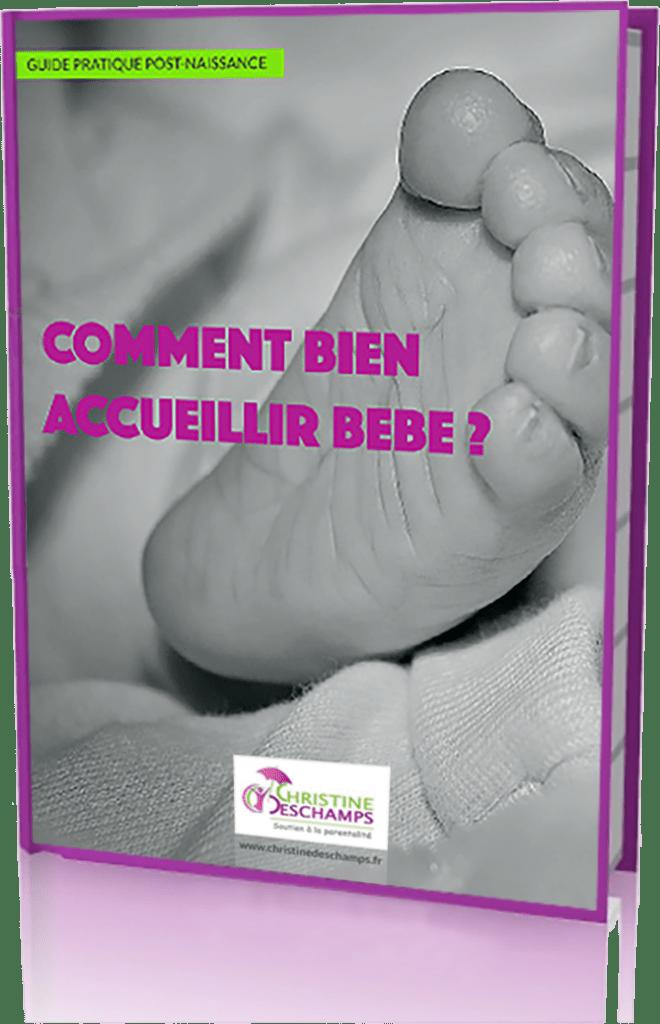 E-Book-Christine-Deschamps-Soutien-à-la-parentalité